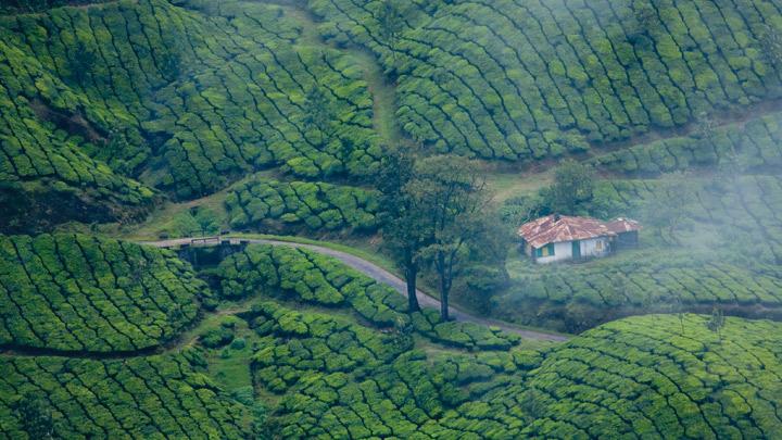 国内资讯_慕那尔,印度喀拉拉邦,喀拉拉旅游,喀拉拉邦旅游局